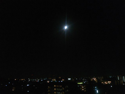 SN3M0189.jpg